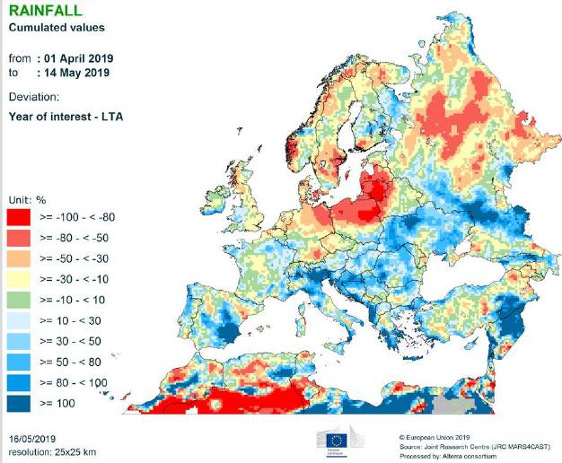 5 2019 MARS BULLETIN Rainfalla