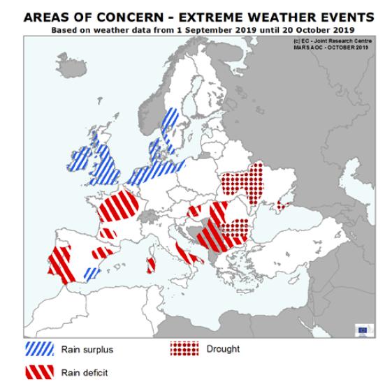 1019 Areas of concern