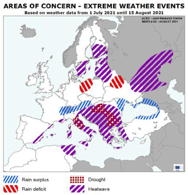 Areas of concern 8 2021