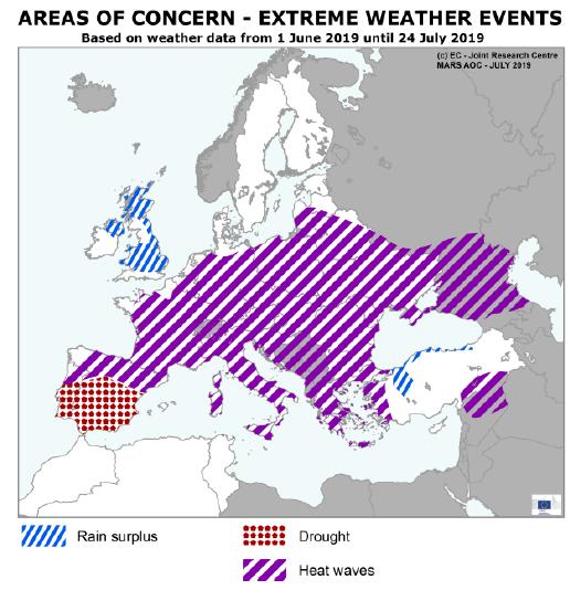 MARS 7 2019 areas of concerns
